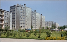 Osiedle Radna, widok budynków mieszkalnych od strony z zielenią miejską, Warszawa