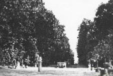 Park pałacowy w Nieborowie
