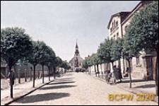 Droga z aleją drzew obok budynków mieszkalnych, Rydzyna