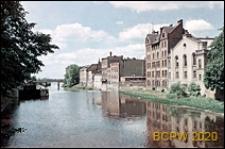 Fosa miejska, widok ogólny, zabudowa od strony Odry, Wrocław