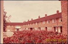 Domy w zabudowie szeregowej, szpaler krzewów różanych, Harlow, Anglia, Wielka Brytania
