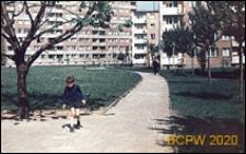 Osiedle mieszkaniowe, zabudowa międzyblokowa, widok pomiędzy chodnikiem a trawnikami z drzewami, Tychy-Nowe Tychy